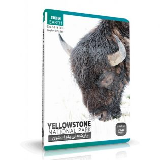 YELLOWSTONE-National-Park.jpg