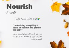 insta-word-nourish-post